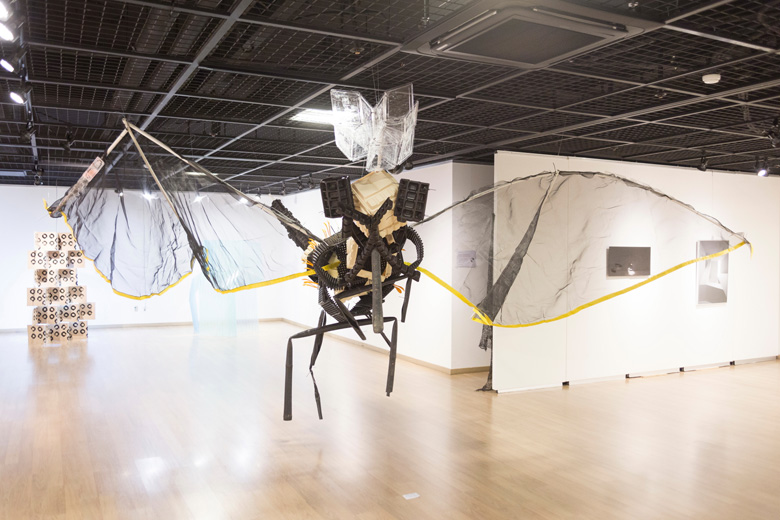 insect_iang_gallery